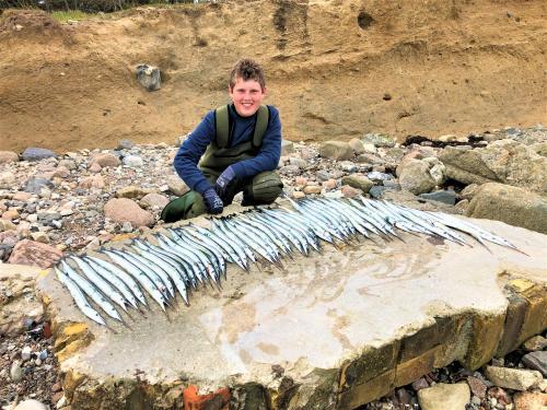 48 Hornfisk, Kr Himmelfart 2020